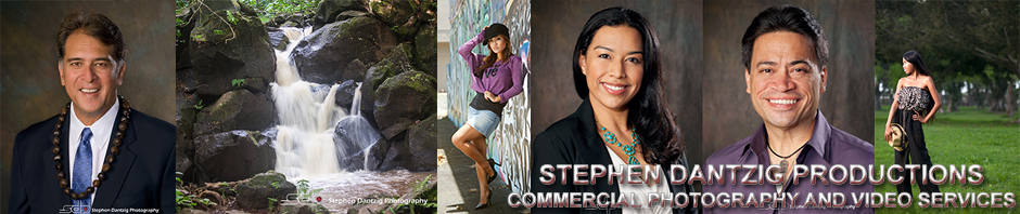 Stephen Dantzig Productions